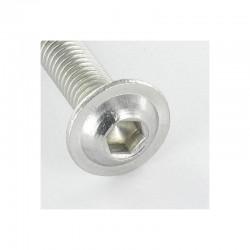 Machine screw hexagonal screw pan head cap 4X16 hexagonal screw 2.5 stainless steel A2 ISO7380F | Integral * 100